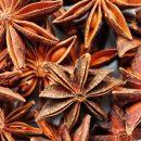 Aceite Esencial Anis estrellado
